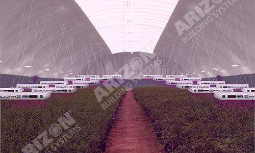 Cost-Effective Indoor Agriculture Industrial Building
